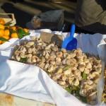 Grönsaksmarknaden i Split – Stari Pazar (5)